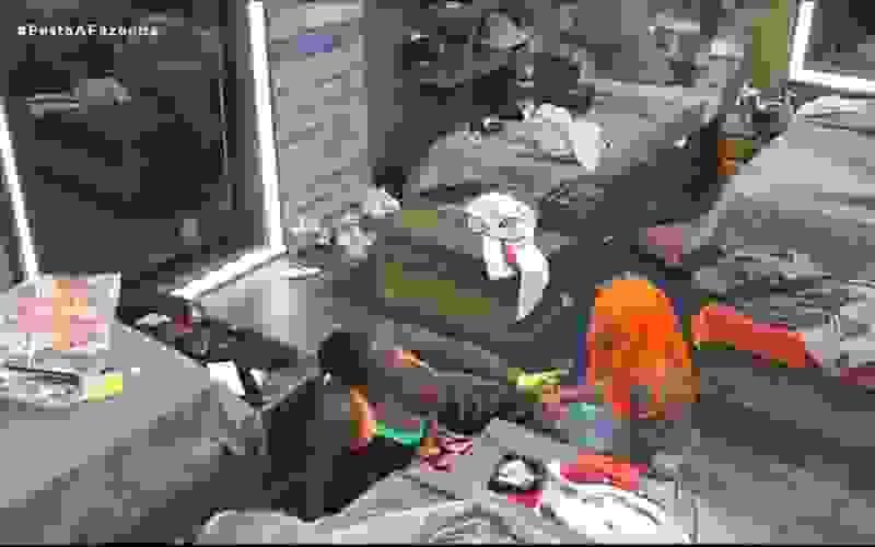 Peões seguem animados pós-festa e tomam punição - A Fazenda 12